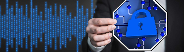 Mantenimiento y seguridad de sistemas informáticos